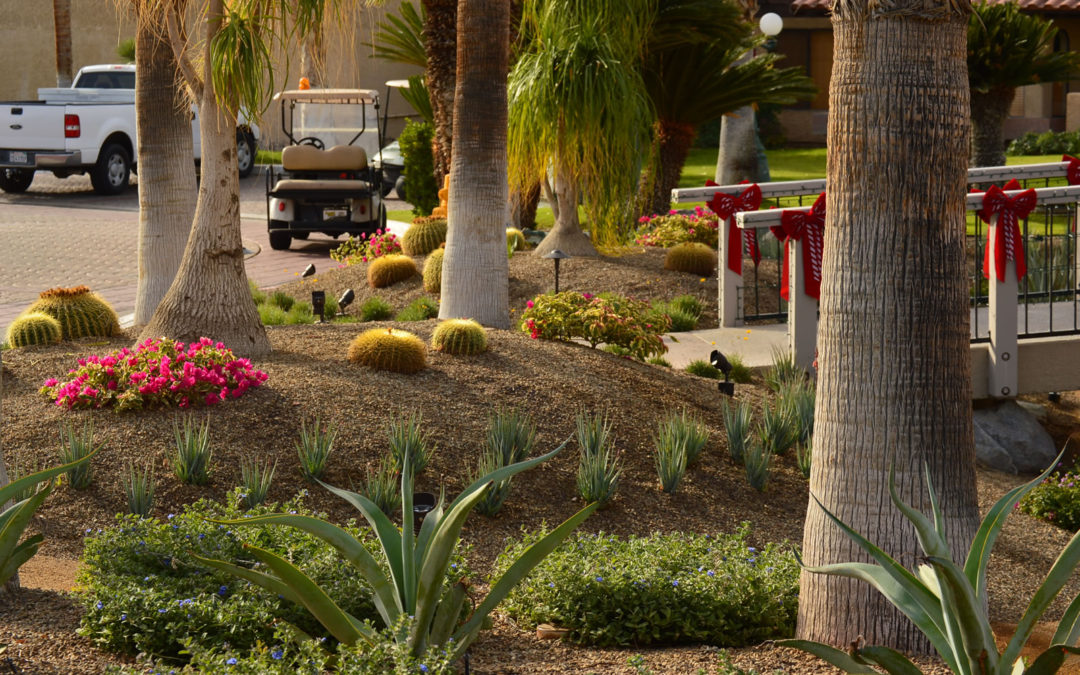 Budgeting for Your New Landscape